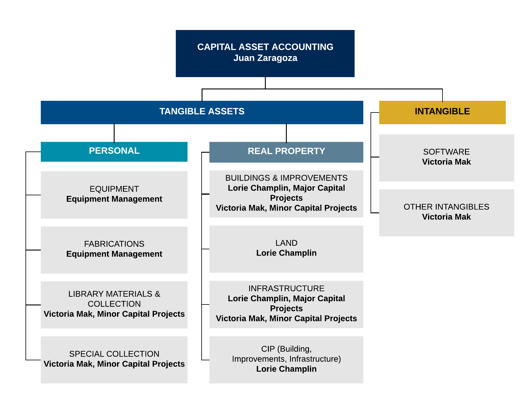 chart of structure for capital asset accounting team