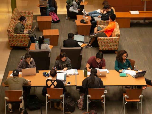overhead shot of uc davis students working at communal tables